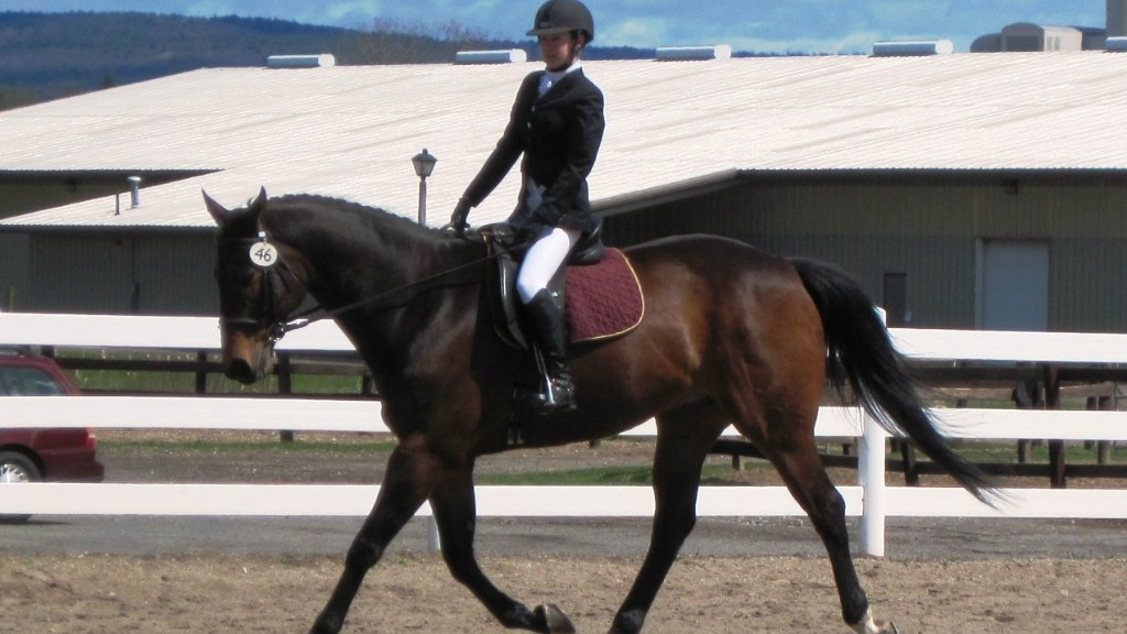 Horse Care, Hooves and Massage Focus of Summer Equine Series at Post ...